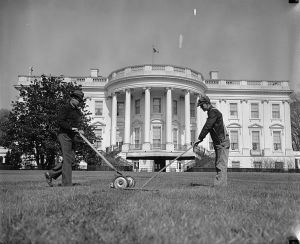 Mowing_&_raking_White_House_lawn26268v