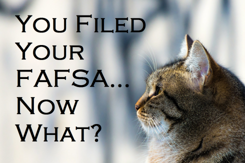 You Filed You FAFSA...Now What