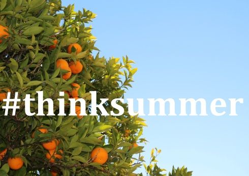 orange tree; text overlay: #thinksummer