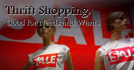 Thrift shopping: good for needs and wants text. Laid over picture of two mannequins wearing shirts that say sale